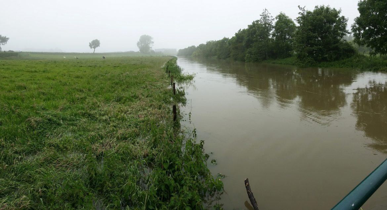 Baliekouter, Mandel, O'Bio, wateroverlast, regenval