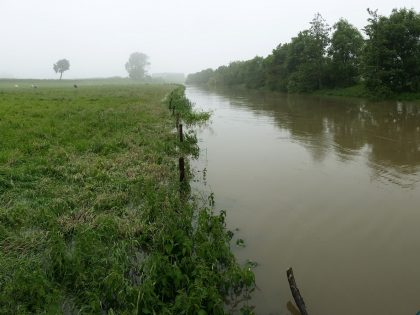 Nog veel water door de Mandel…