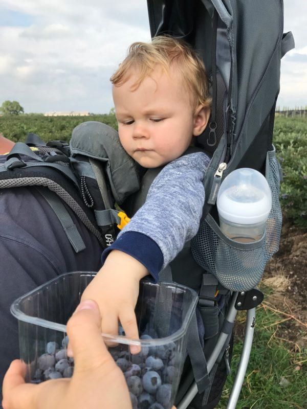 Kleine jongen eet blauwe bessen