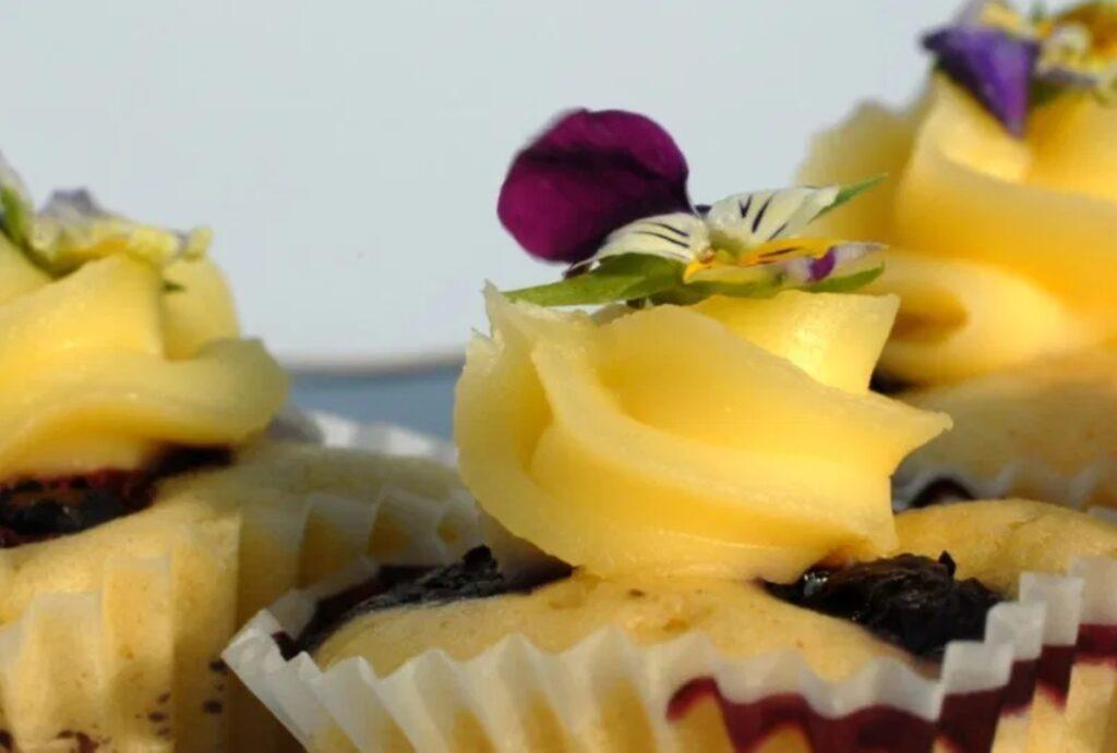 close-up cupcake blauwe bessen